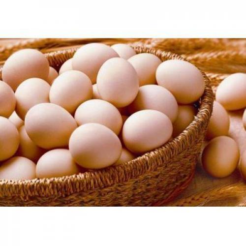 白壳鸡蛋约50...